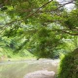天川村の川(ささやかな癒し)