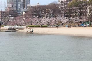 都会に砂浜? 大川沿い
